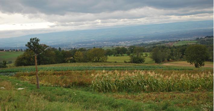 Terrain repris, en conversion vers agriculture biologique